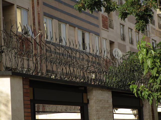 نرده شاخ گوزنی از نمای دور