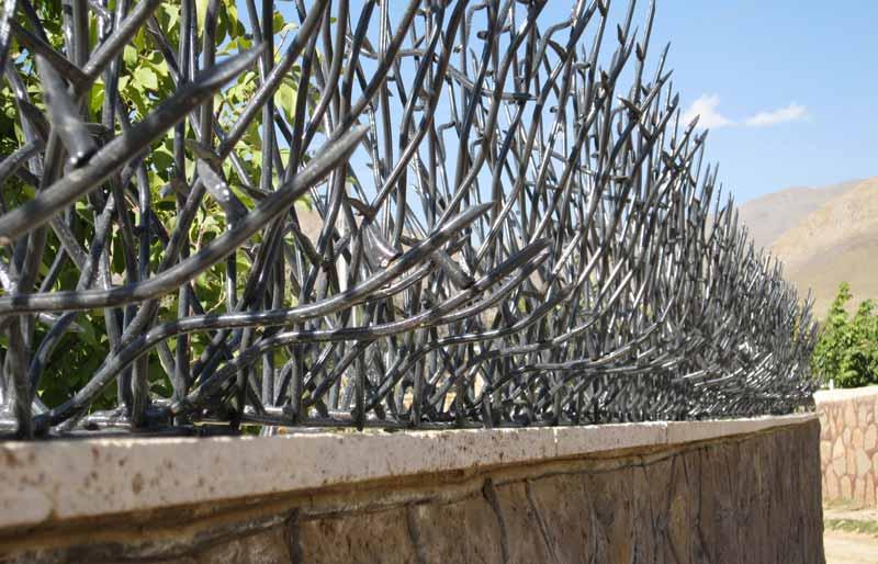 حفاظ شاخ گوزنی با تراکم بالا